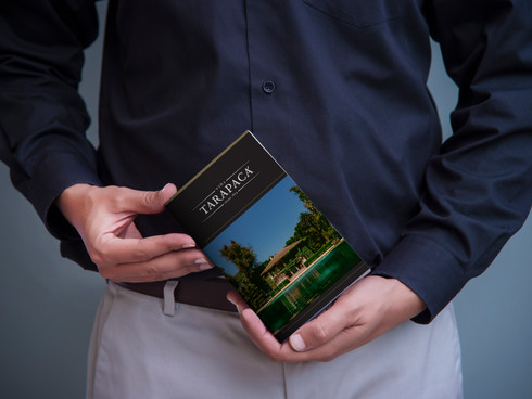 212-book cover-mockup-free.jpg