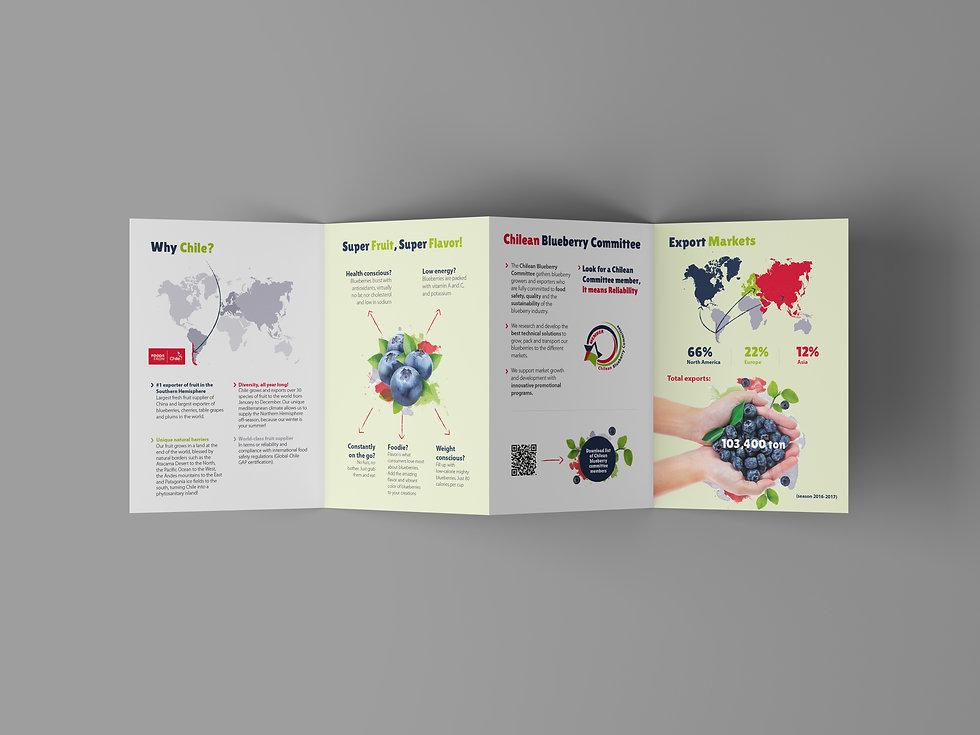 4 Fold Brochure Mockup-Recuperado(2).jpg