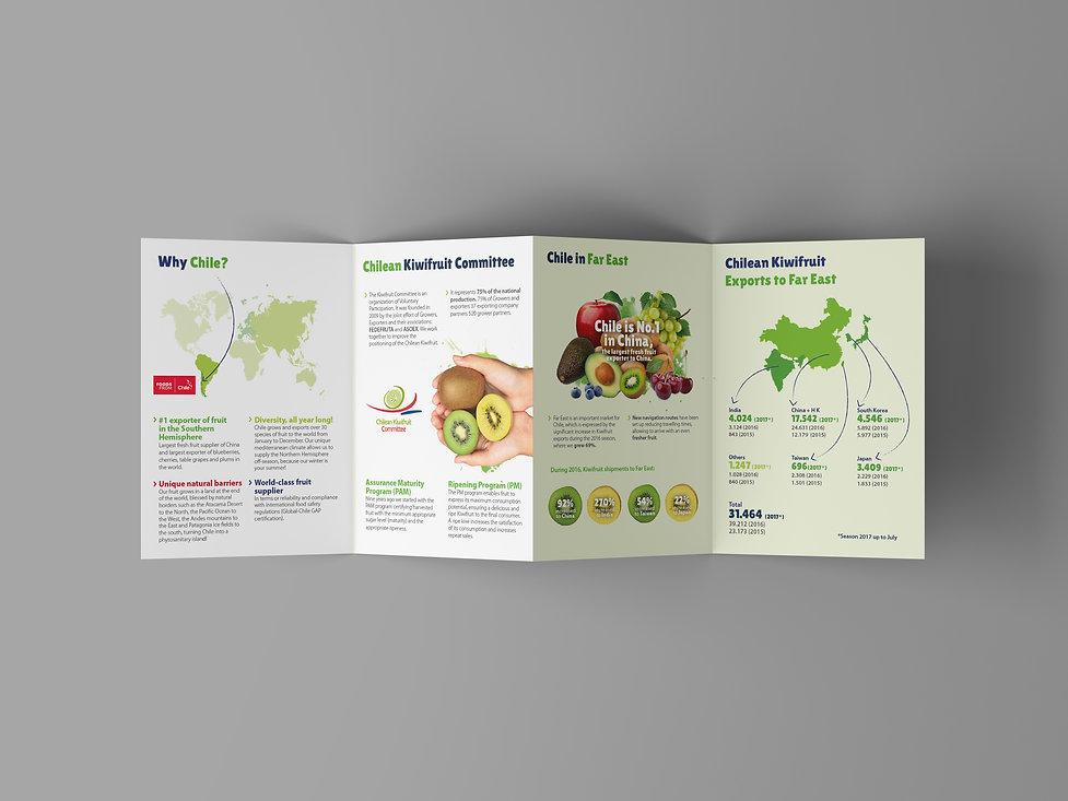4 Fold Brochure Mockup3.jpg