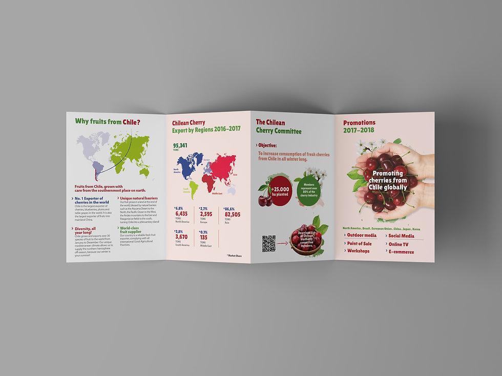 4 Fold Brochure Mockup.jpg