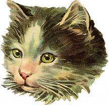 Vintage-Cat-illustration-GraphicsFairy-1