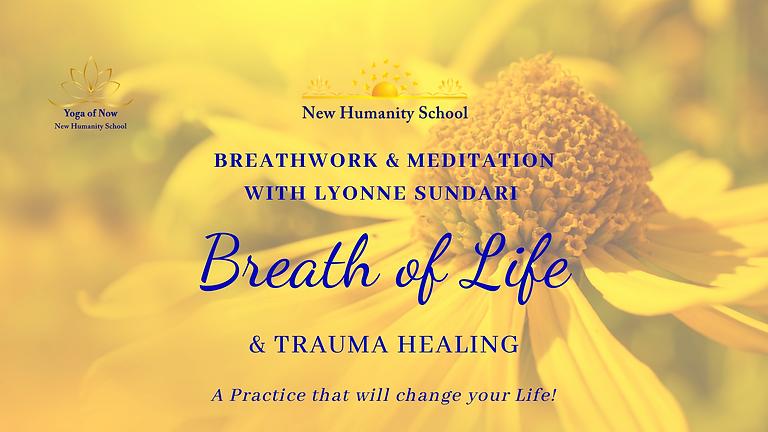 Breath of Life & Trauma Healing