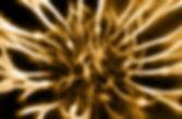 Kriya-2.jpg