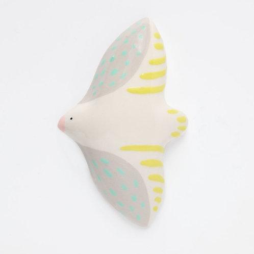Oiseau en vol - Dodo Toucan