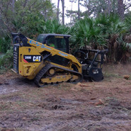 Palmetto clearing job