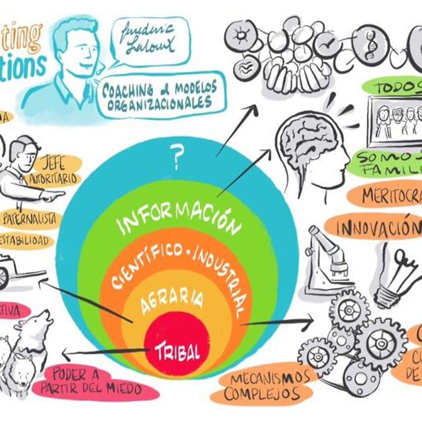 Reinventando las Organizaciones