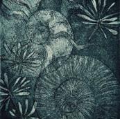 Memory of Ammonites