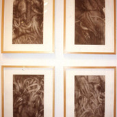 Installation View of Squid Woman Series