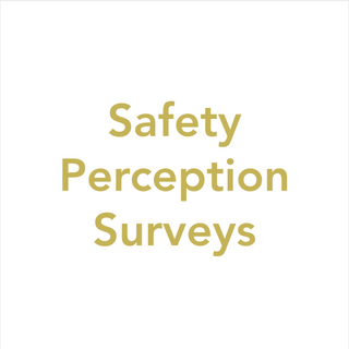 Safety Perception Surveys