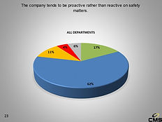 Safety Perception Survey Example Results