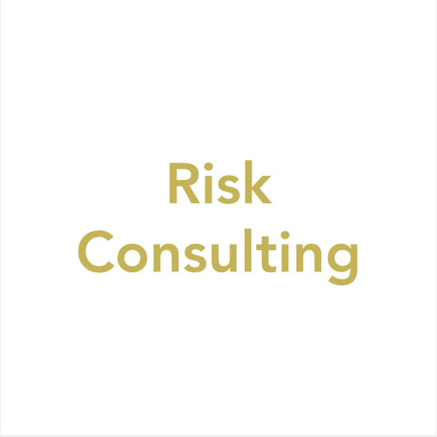 Risk Consulting