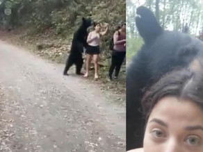 Avvicinata da un orso, si fa un selfie - IT EN (video)