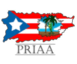 Puerto Rican Institute for Arts & Advocacy, Inc.