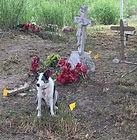 Hidalgo Cemetery2.jpg