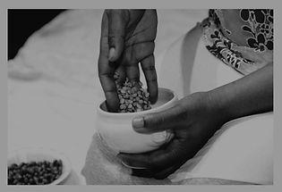 lentils-background_edited.jpg