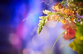004-Plante fleurs.jpg