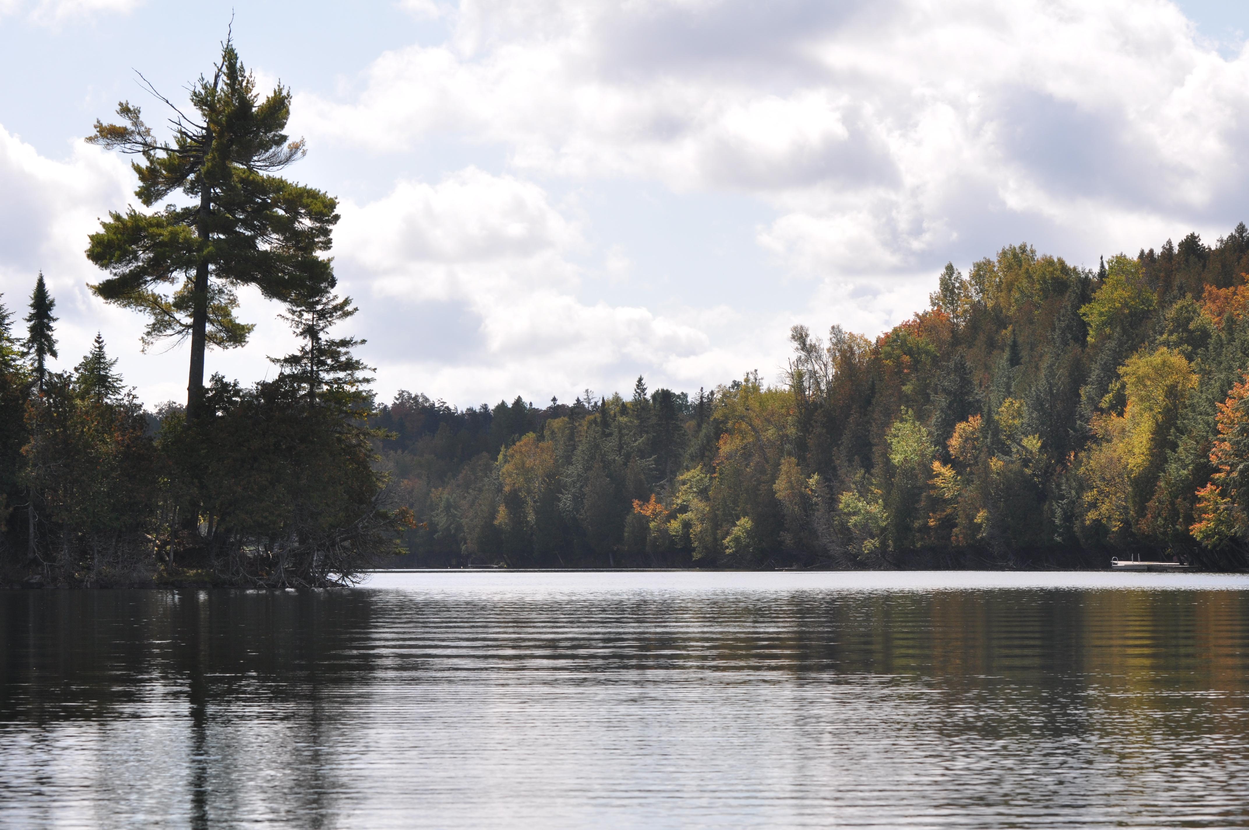 Vue du quai à l'automne