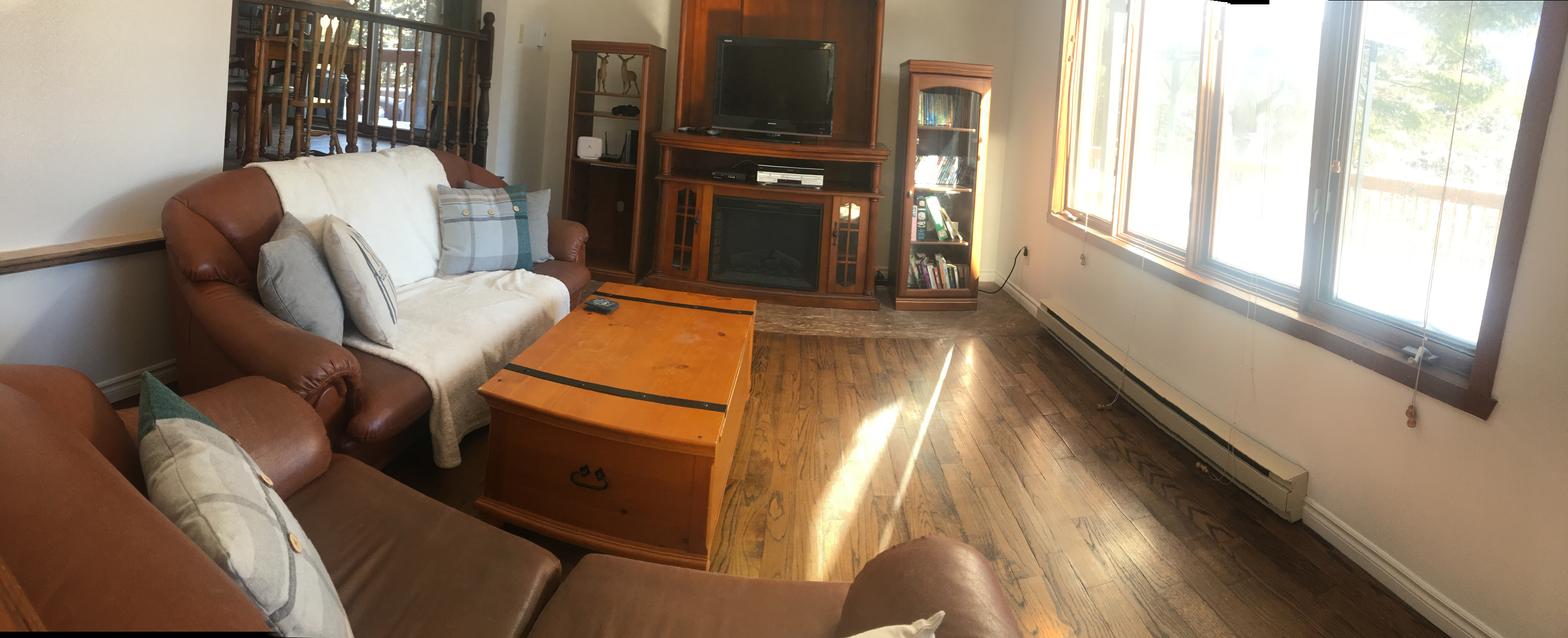 Salon avec foyer électrique