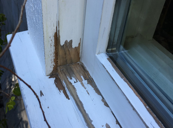 Sill Dry Rot
