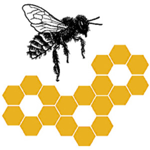 October Bee Club Meeting - Nutrition and Genetics