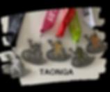 taonga.png