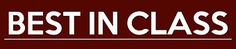 BIC-logo-vinho-2.png