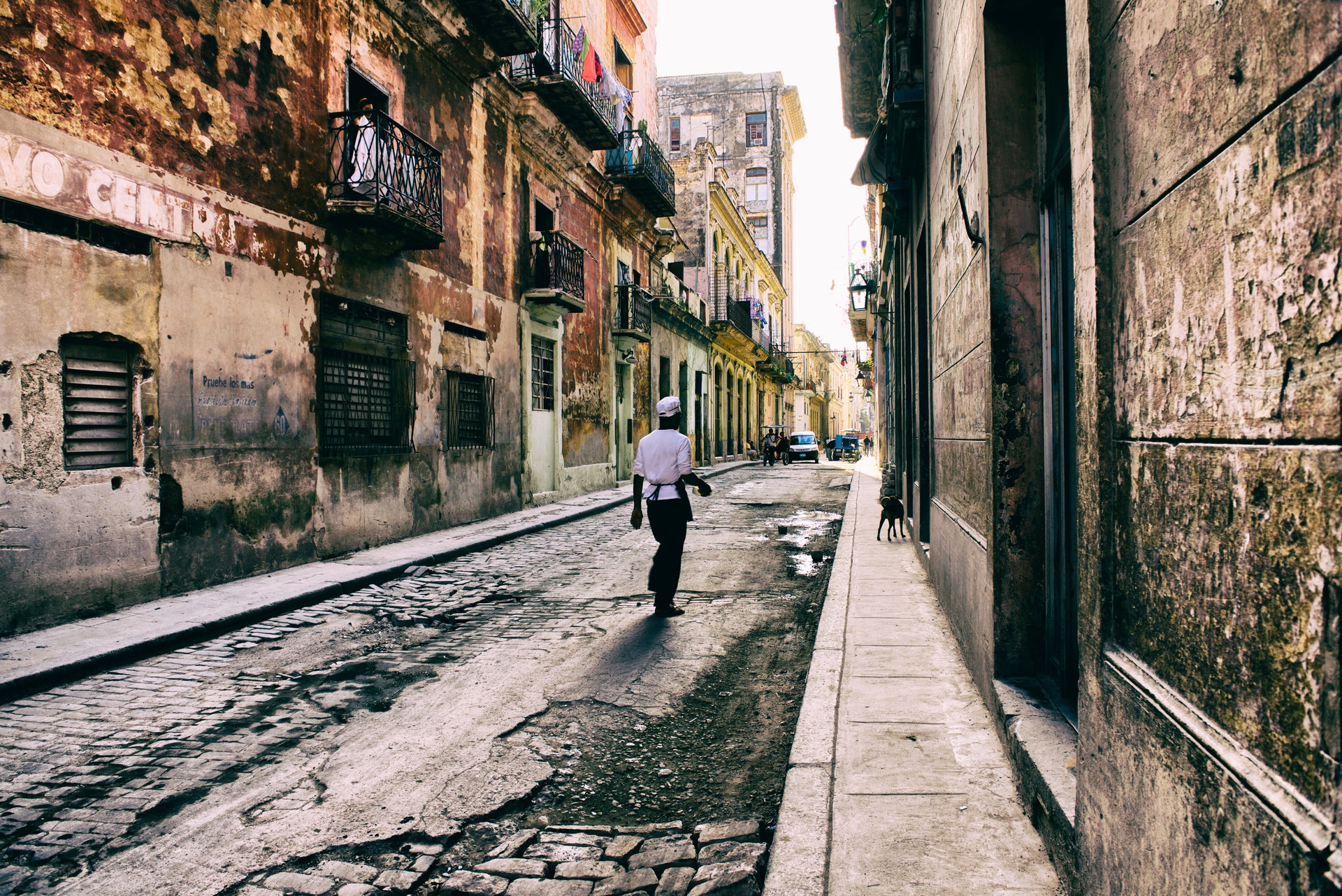 Cook in Havana street