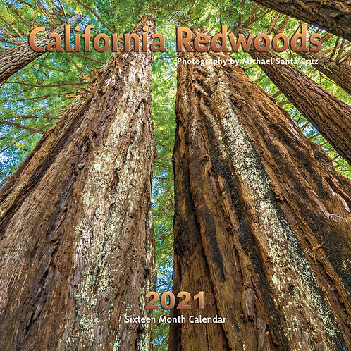 California Redwoods 2021 Calendar