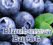 Blueberry Burst1.jpg