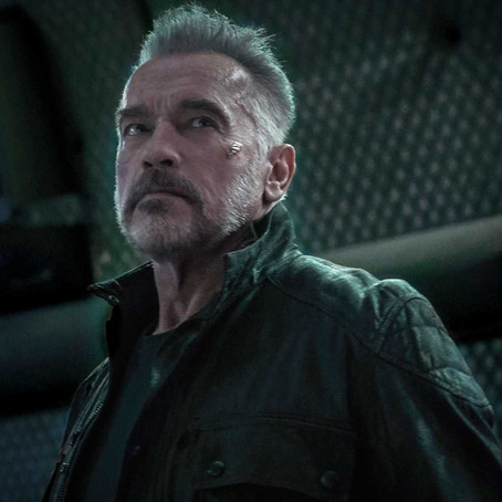 Terminator: Terminate   Why Arnold Should Log Off