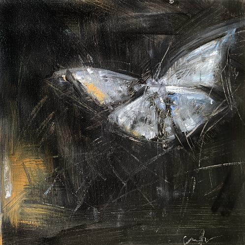 Moth (Diptychy)