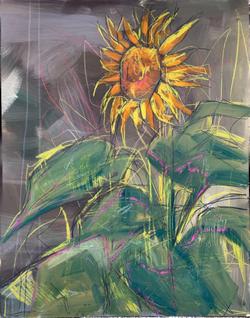 Moonlit Sunflower