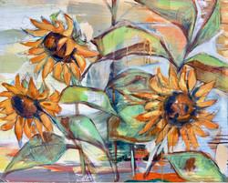 Sunflowers IV