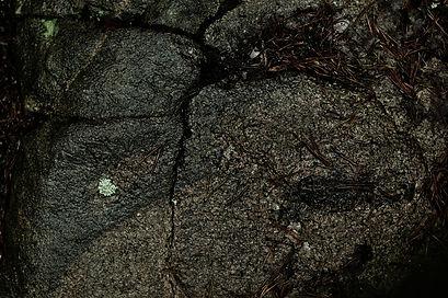 kalliohalkeama.jpg