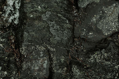 kallio1.jpg
