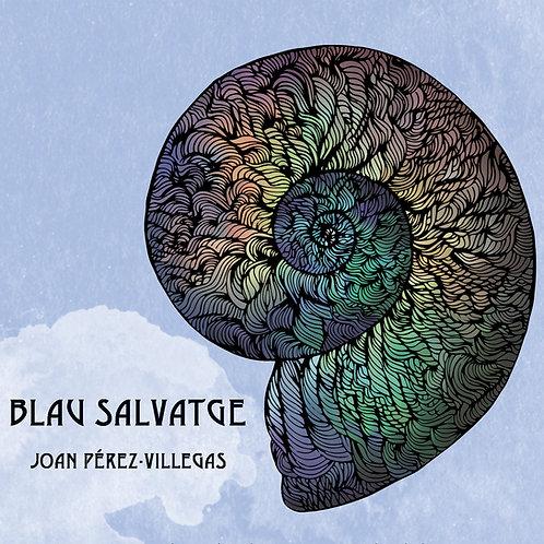 "Joan Pérez-Villegas ""Blau Salvatge"""