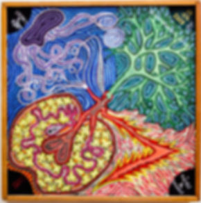 Jean-Baptiste Leducq - Bioglyphs - Dreams & Roots