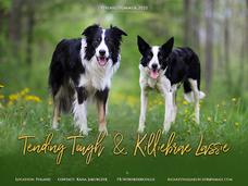 Lassie & Taflon
