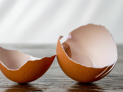 You've Been Stuck at Home and Eggshells Suck
