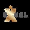 Born_To_Excel-6-BLACK BIG FILE.png