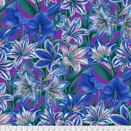 Amarilys Blue KF344