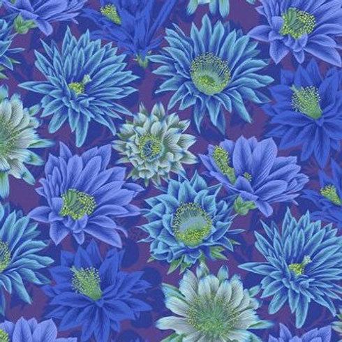 Kaffe Fassett Cactus Flower/Blue