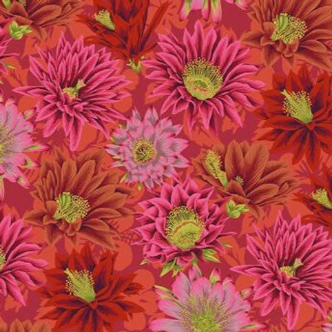 Kaffe Fassett Cactus Flower/Red