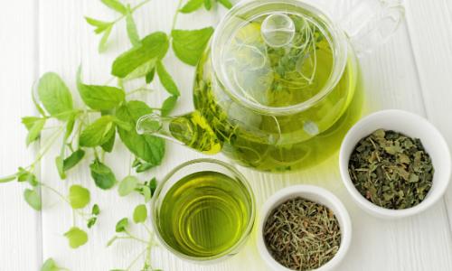 Green tea, obesity and osteoarthritis (OA)