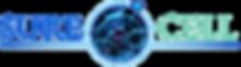 stem cell melbourne
