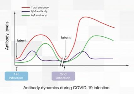Antibody testing the key to restart economy