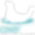 Logo Blanc Coverseal