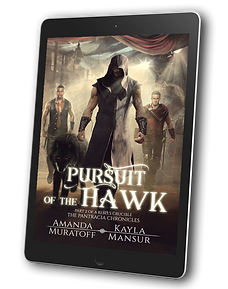 Pursuit of the Hawk ebook 3D.png