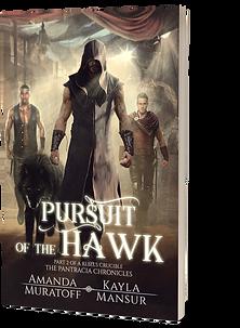 Pursuit of the Hawk 3D.png