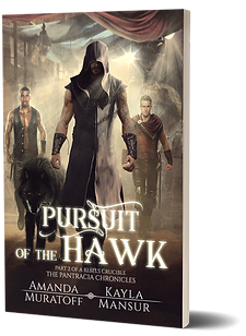 Pursuit of the Hawk 3D.png
